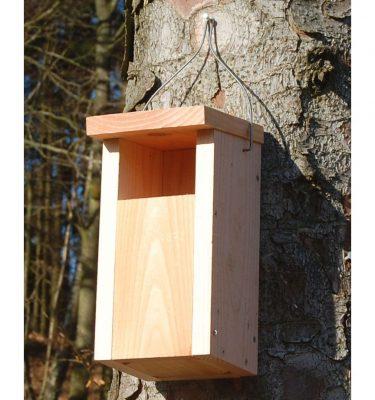 Fuglekasse til gråfluesnapper