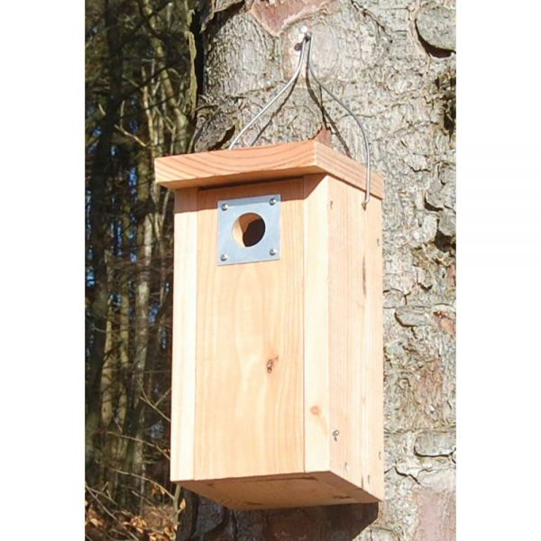Fuglekasse til musvitter og rødstjert med 32mm hulstørrelse og hulforstærkning